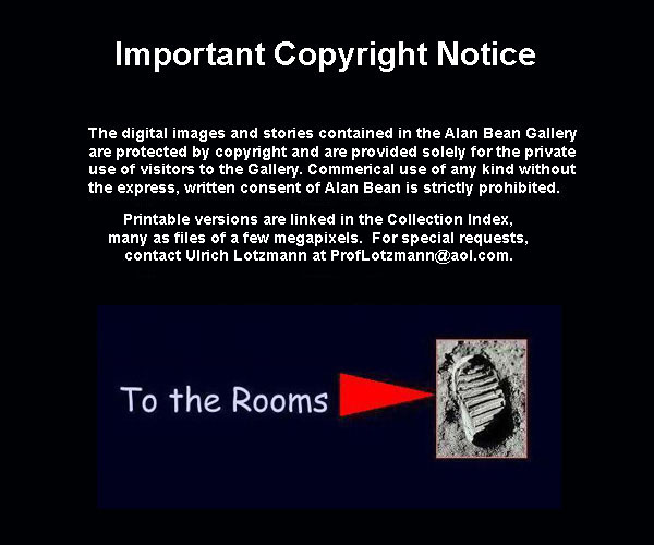 Alan Bean Gallery-Copyright Notice